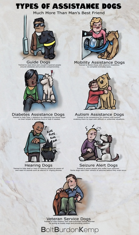 Assistance Dogs Poster